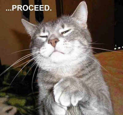 Meme Proceed - Cat