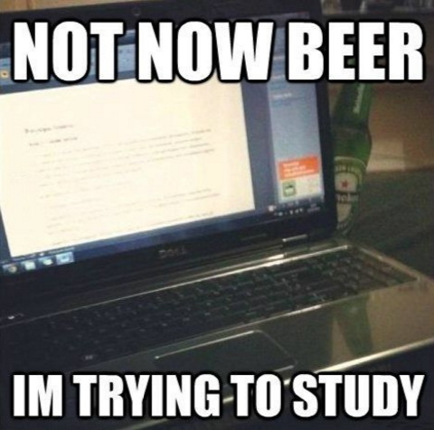 Not now beer I'm trying to study