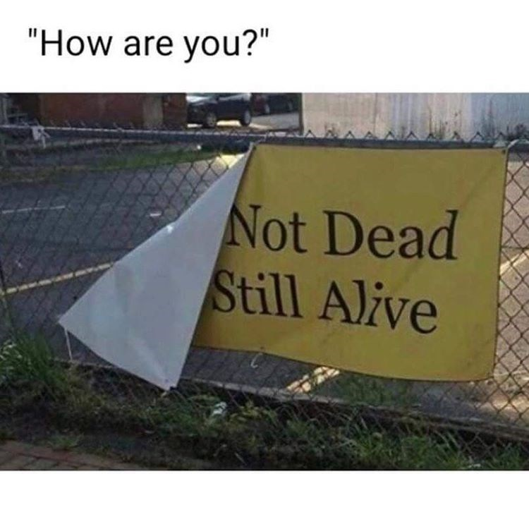 Meme How are you? - Not dead Still alive