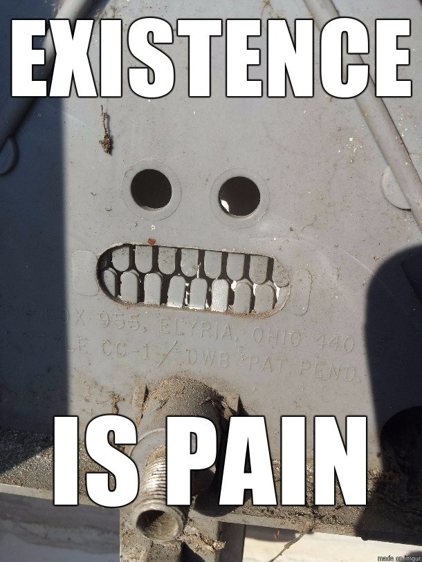 Meme Existence is pain