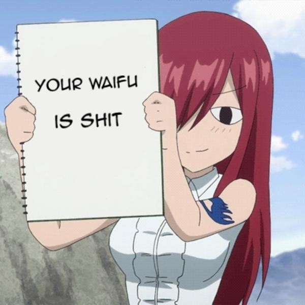 Meme Your waifu is shit