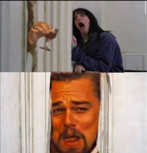 Meme Leonardo DiCaprio - Shining - Scream